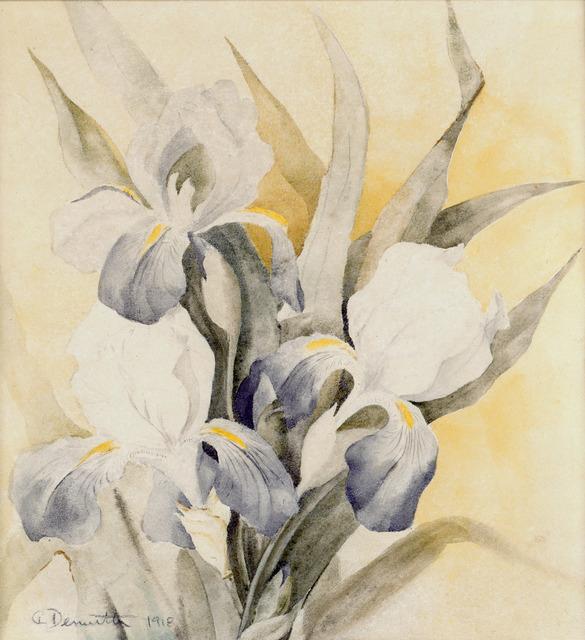 Charles Demuth, 'Iris', 1918, Forum Gallery
