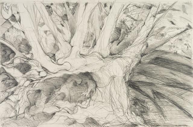 , 'Roots 2,' 2015, Denise Bibro Fine Art