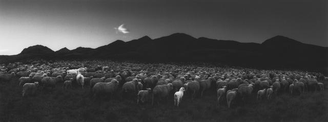 , 'Barun-Khemchik, Tuva, Siberia,' 1997, The Photographers' Gallery   Print Sales