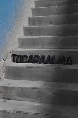 , 'Escada Palavra - Tocar a Alma,' 2011-2014, Anita Schwartz Galeria de Arte