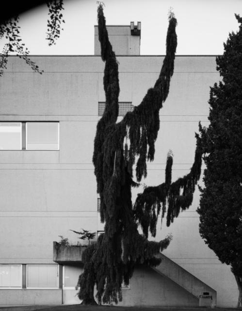 , 'Outside Academy,' 2012, Galerie Catherine Bastide