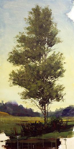 Peter Hoffer, 'Cedar', 2012, Kathryn Markel Fine Arts