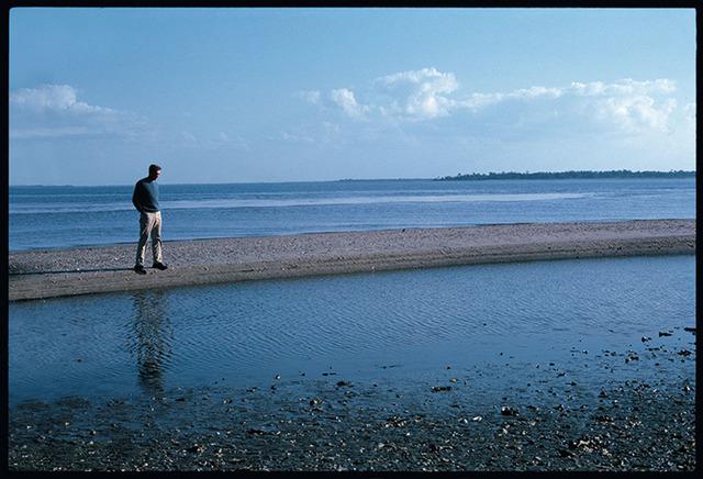 , 'Jasper Johns.Edisto Beach,' 1965, Lia Rumma