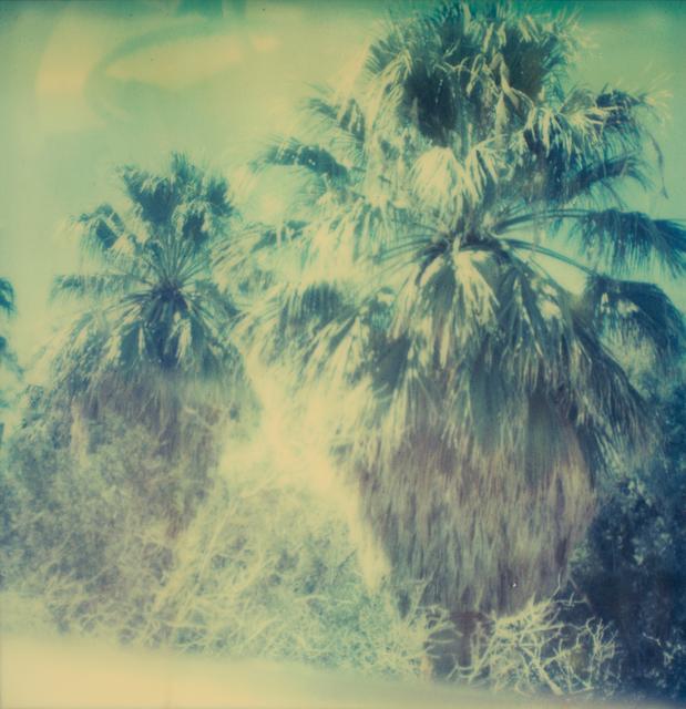 , 'Blue Sky Palm Trees,' 2005, Instantdreams