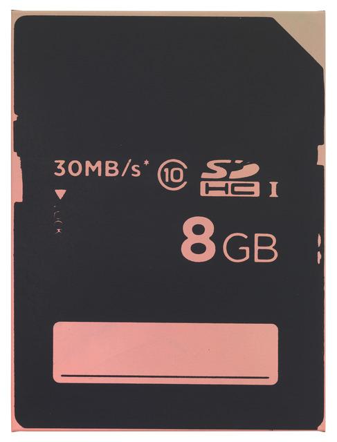 , 'A SD CARD 8 GB,' 2013, DITTRICH & SCHLECHTRIEM