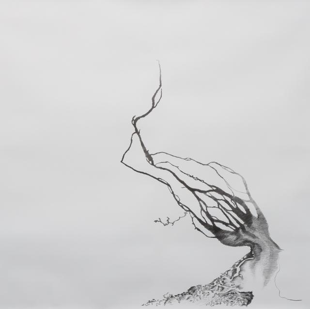 , 'Bombetoka Tree,' 2013, Magnan Metz Gallery