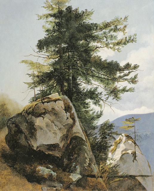 , 'Study of a tree near Miesenbach,' 30, Galerie Kovacek