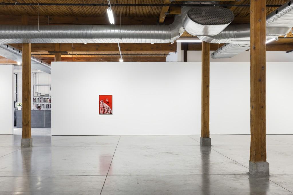 Michelle Bui, Centerfold, 2019, installation view.