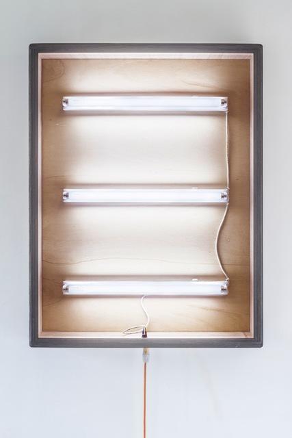, 'Internal structure No.1 ,' 2016, Blindspot Gallery