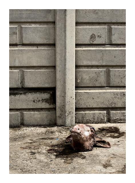 , 'S. 1206 Vuka section, Sharpeville,' 2009, Goodman Gallery