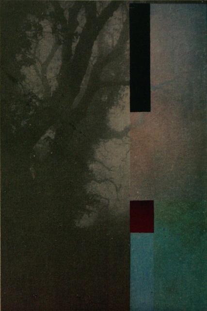 , 'Forest,' ca. 2016, Artgráfico