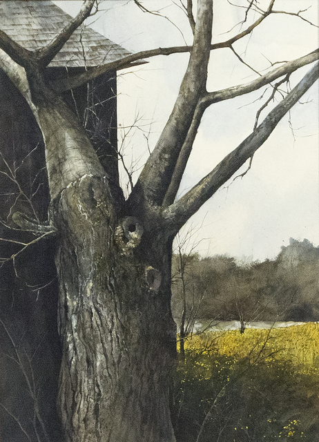 , 'Tree with Bare Branches,' 1972, Heather James Fine Art