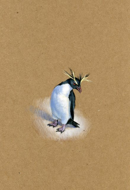 Dina Brodsky, 'Rockhopper Penguin', 2019, Garvey   Simon