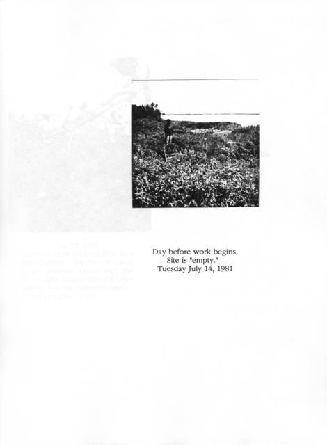 , 'Guggenheim Fellowship Report Document,' 1981, Brooklyn Museum