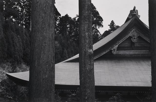Paul Caponigro, 'Temple Roof, Hiei-San, Kyoto, Japan', 1976, Pucker Gallery