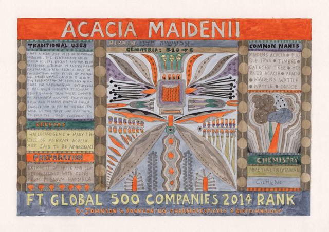 , 'HFT The Gardener/Outsider artworks/Acacia maidenii (Maiden Acacia),' 2015, P.P.O.W
