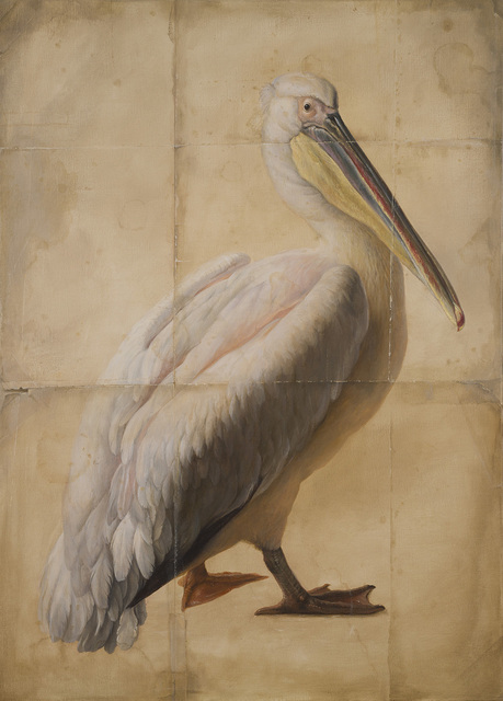 , 'Pelican (After d'Hondecoeter),' 2016-2017, The Scottish Gallery