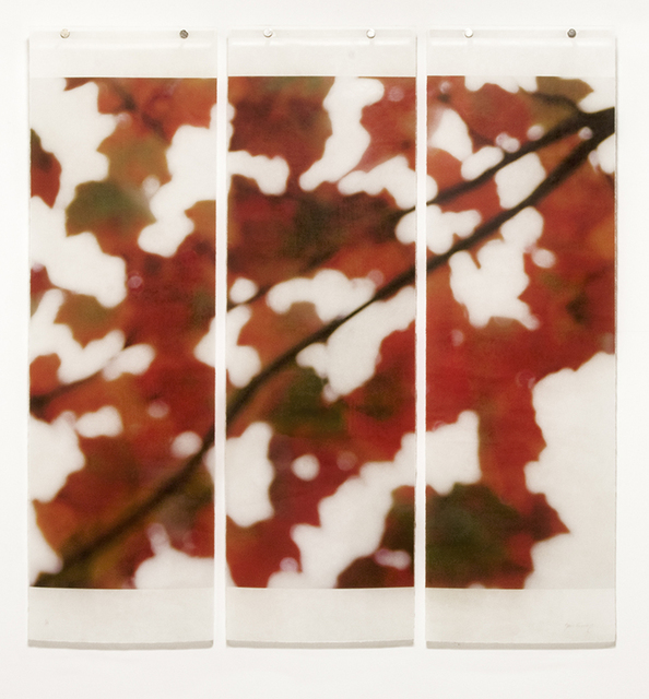 Jeri Eisenberg, 'Autumn Splash', 2014, Photography, Archival pigment ink on Kozo paper infused with encaustic, Kathryn Markel Fine Arts