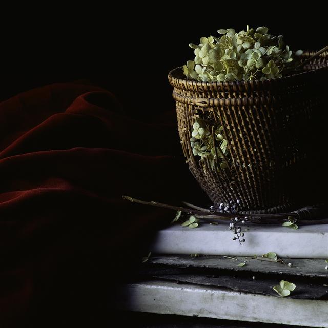 Paul Cary Goldberg, 'Still Life with Basket and Hydrangea', 2014, Pucker Gallery