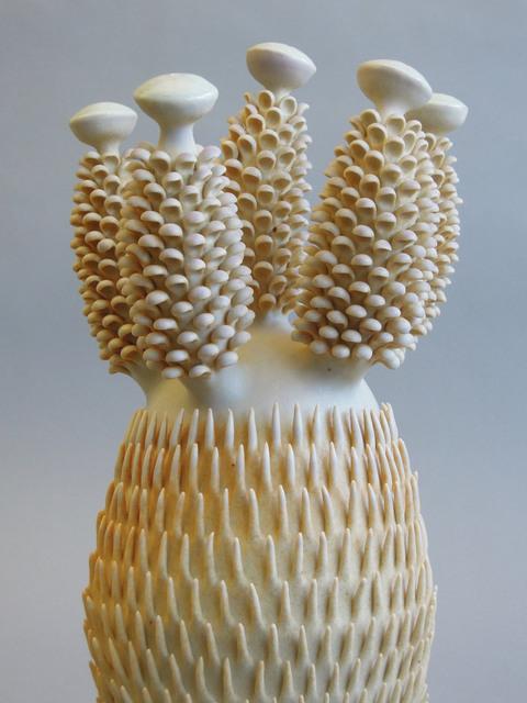 , 'sagte pynappel kaktus,' 2017, Rhona Hoffman Gallery