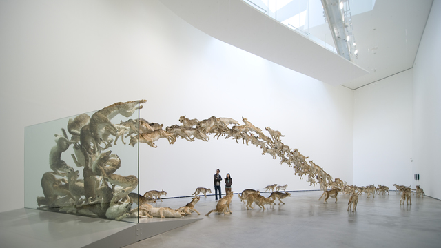 Cai Guo-Qiang, 'Head On,' 2006, Cai Studio
