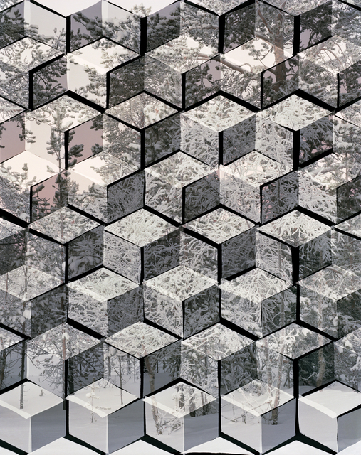 , 'Arctic Landscape (Trees),' 2014, Galerie Christophe Gaillard
