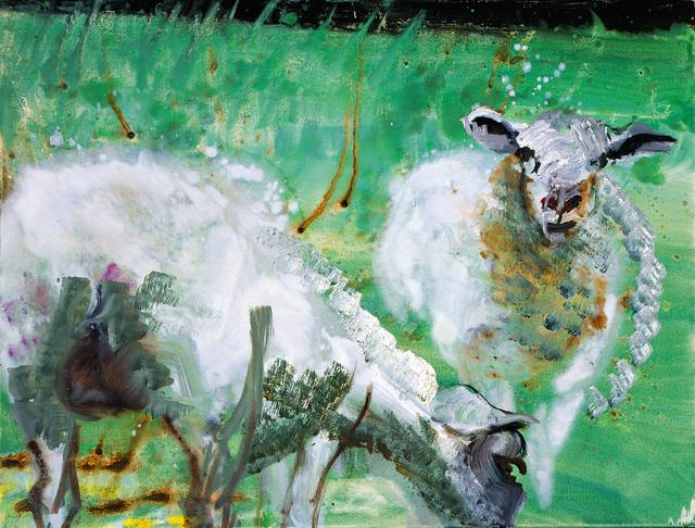 , 'Schaafe (Sheep), Sylt ,' 2013, Galerie Herold
