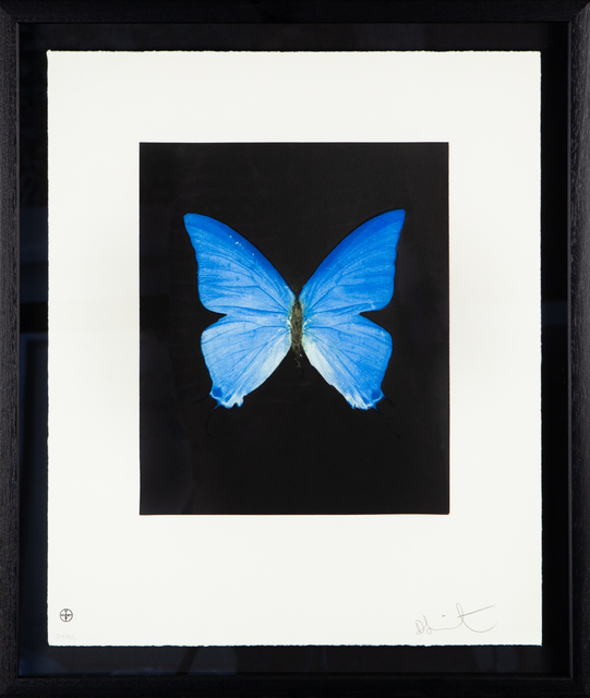 Damien Hirst, 'Providence', 2009, The Drang Gallery