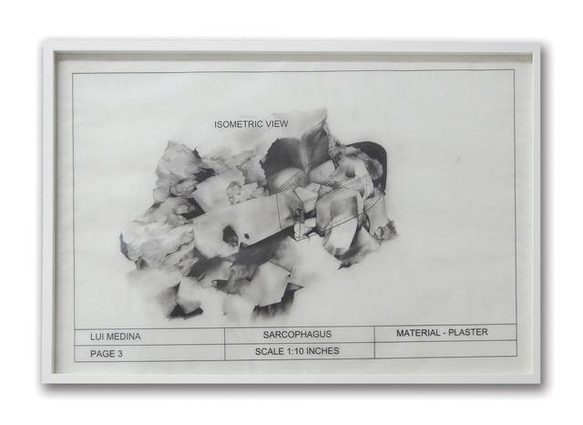 , 'Untitled (Natural History 3),' 2013, Artinformal