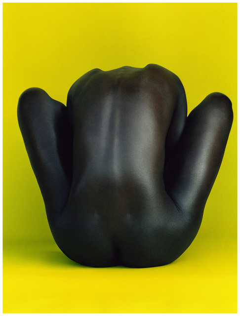 , 'Black Beauty,' 2008, Kahmann Gallery