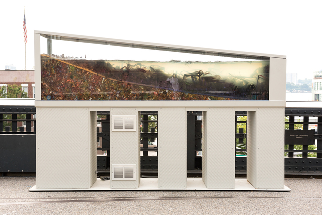 , 'Intertidal Landscape (Hair Metastasis),' 2017, High Line Art