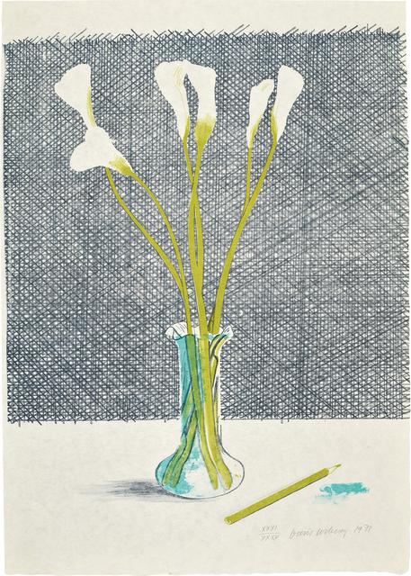 David Hockney, 'Lillies, from Europäische Graphik No VII', 1971, Phillips