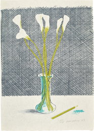 Lillies, from Europäische Graphik No VII