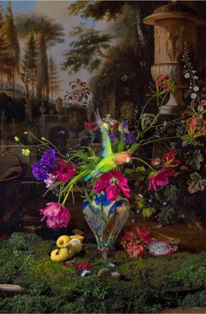 , 'Still life with Parrot and Butterfly,' 2016, Eduard Planting Gallery | Fine Art Photographs