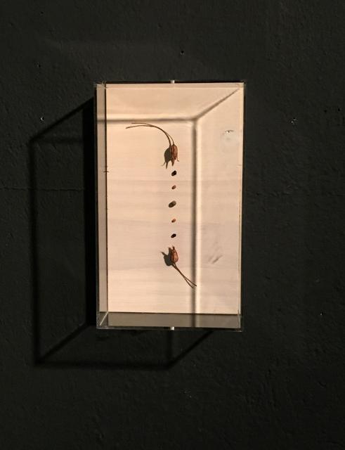 , 'Neuordnung X,' 2015, Galerie SOON