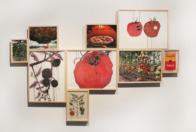 , 'Organic / Inorganic,' 2015, Gallery Espace