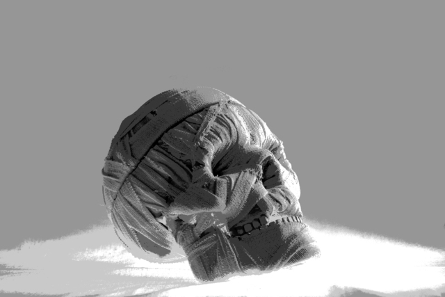 , 'Skull,' 2013, Sanat Initiative