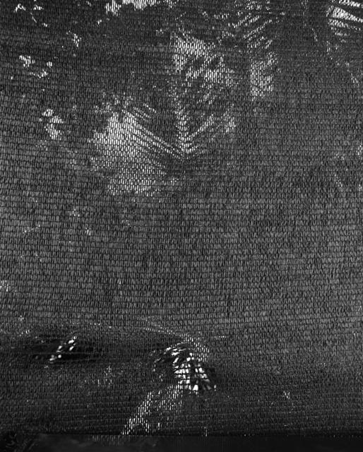 , '#450-9,' 2016, Kristof De Clercq
