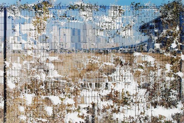 , 'Focus,' 2014, Blindspot Gallery