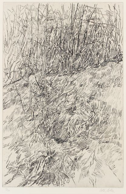 Peter Coker, 'Epping Forest', Chiswick Auctions