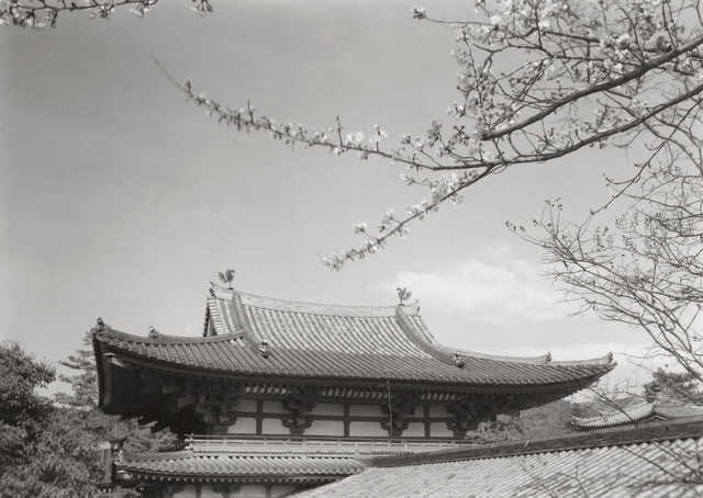 , 'Byodo-In, Kyoto, Japan,' 1976, Pucker Gallery