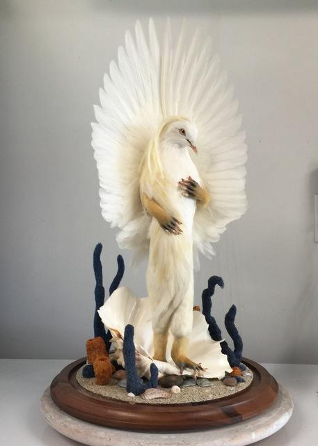 , 'Venus,' , Bernice Steinbaum Gallery