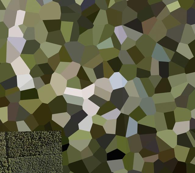 Mishka Henner, 'De Peel Patriot Missile Site, Limburg', 2011, Bruce Silverstein Gallery