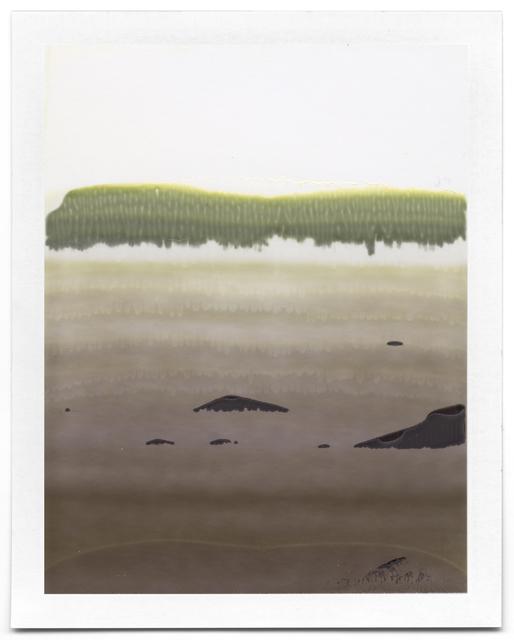 , 'Untitled (Landscape #22),' 2008-2014, Flowers