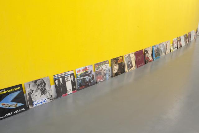 , 'Amarillismo,' 2014, Instituto de Visión