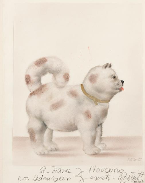 , 'Dog,' 1977, Hollis Taggart