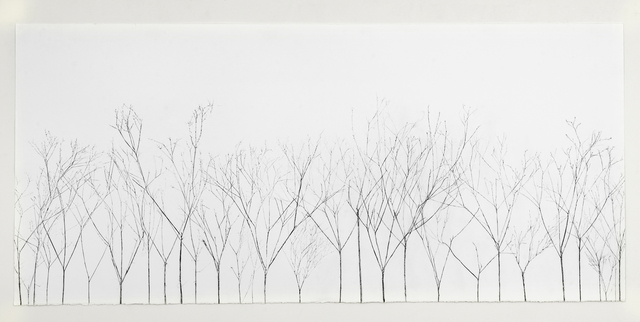, 'In the Shadow of Trees,' 2018, Talley Dunn Gallery