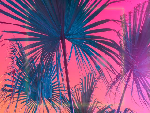 , 'Palms Squared,' 2020, ArtStar