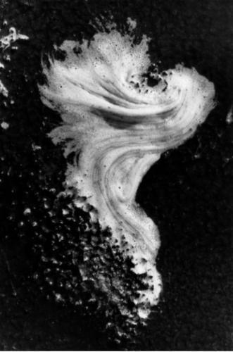 , 'Camargue,' 1967, Bernheimer Fine Art