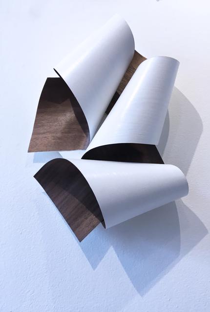 KONUS, 'Curves 01', 2021, Sculpture, Walnut wood flat cut veneer and acrylic paint mounted on plywood installation panel, Deep Space Gallery